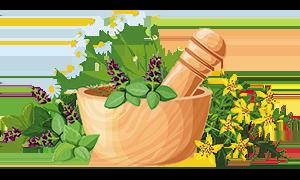 kozmetikumok gyógynövényekből